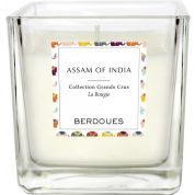 Candle Assam India Berdoues