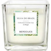 Candle Selva do Brazil Berdoues