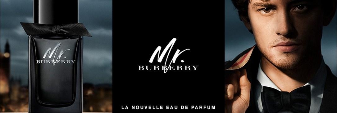 Mr. Burberry Eau de Parfum pour Homme
